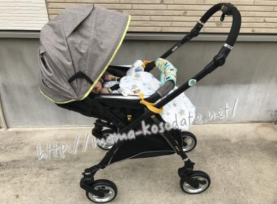 フィーノに1ヶ月の赤ちゃん